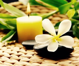 Un entorno energéticamente limpio, favorece armonia,  salud y prosperidad.