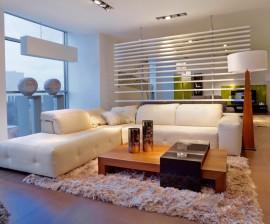 Limpieza energética- saneamiento de espacios.