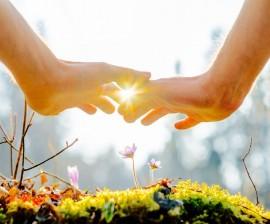 Terapia de armonización para crecer en paciencia, sabiduría y fe,  aceptando que todo cambio requiere tiempo esmero y dedicación.